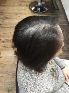 ヘナ 100% 染める前 白髪30%