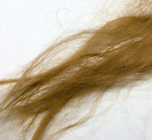 髪の毛のダメージ