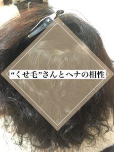 くせ毛とヘナについて 千里山 美容室 マイフ